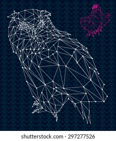 Owl and eagle low poly design, hipster abstract geometric on triangular pattern background.