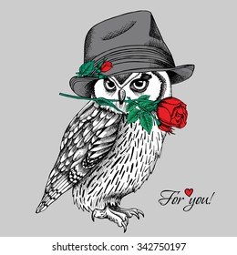 Owl in Elegant gray hat with red rose. Vector illustration.