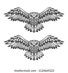 Owl. Flying owl hand drawn vector illustration. Owl stylized logo and symbol.