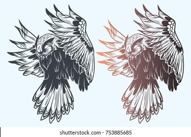 Owl graphic illustration