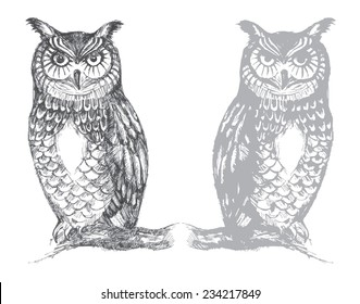 Owl hand drawn vector graphics