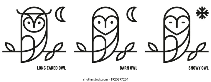 Owl icons. Barn, Long Eared and Snow. Ornithology, Nocturnal, Bird of Prey. Knowledge and Knowledge. Mono outline style - Vector