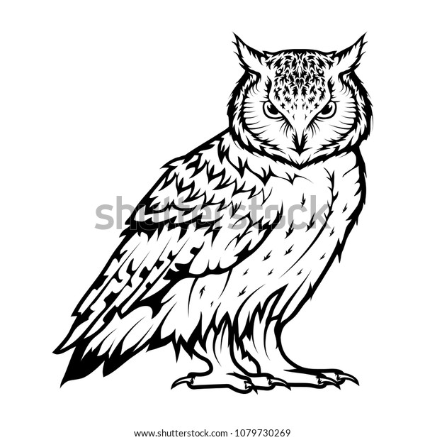 Owl logo. Wild birds drawing. Head of an owl. Vector graphics to design.