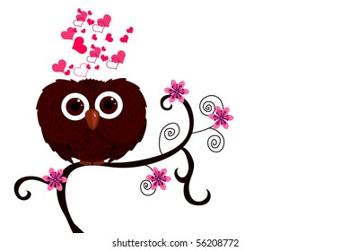 owl and love