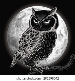 Owl and moon at night. Vector illustration.