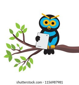 owl on a tree branch using a new tablet