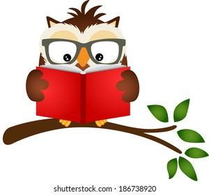 Owl reading a book on tree branch