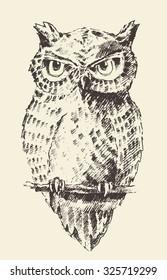 Owl vintage illustration, engraved retro style, hand drawn, sketch