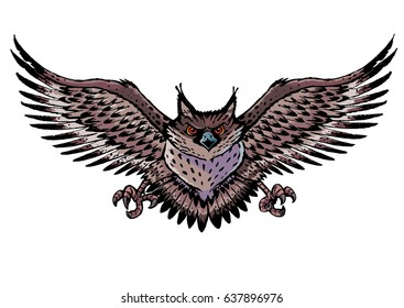 owl with wings spread  Owl With Wings Spread Images, Stock Photos