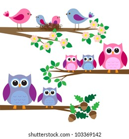 Owls and birds sitting on branches. Vector set