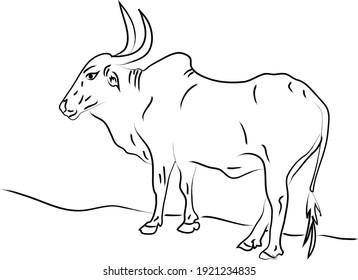 Ox Illustration in Black Outline | Lunar New Year 2020