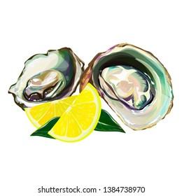 Oyster isolated on white background. Vector illustration of raw clam. Seafood menu