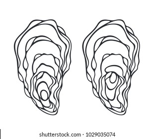 Oyster set. Isolated oyster  on white background. EPS 10. Vector illustration