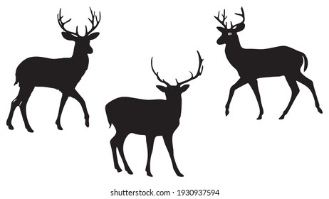 pack of three Deers vector silhouette illustration isolated on white background