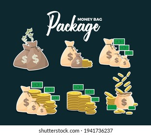 Package Money Bag,Six Vector Money Bag and Coin