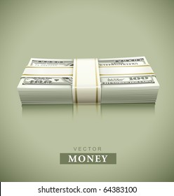 packaged bundle of money dollars vector illustration