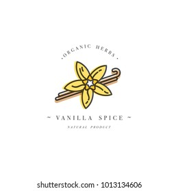 Packaging design template and emblem - herb and spice - vanilla flower and pods. Logo in trendy linear style
