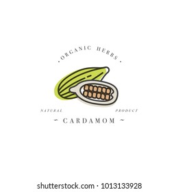 Packaging design template logo and emblem - herb and spice - cardamom. Logo in trendy linear style