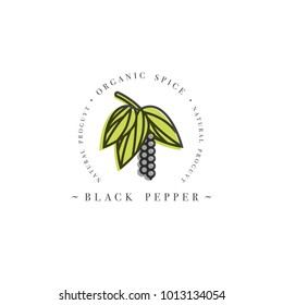 Packaging design template logo and emblem - herb and spice - blossoming black pepper with seeds. Logo in trendy linear style