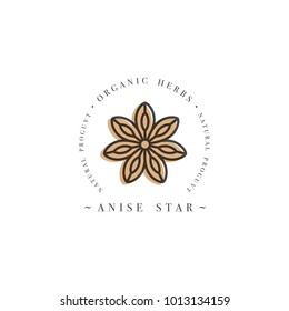 Packaging design template logo and emblem - herb and spice - anise star. Logo in trendy linear style