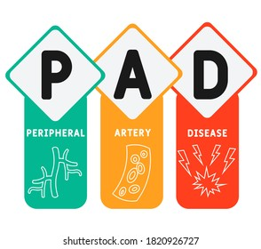 PAD - Peripheral Artery Disease acronym, medical concept background. vector illustration concept with keywords and icons. lettering illustration with icons for web banner, flyer, landing page