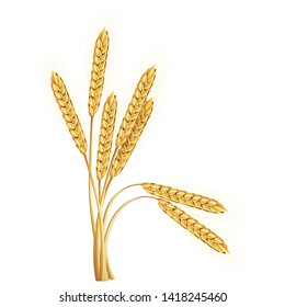 Paddy rice grains weeds malt barley oats isolated