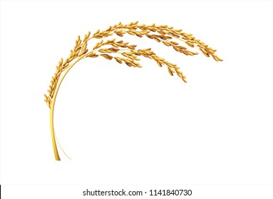 paddy rice malt wheat barley template design isolated