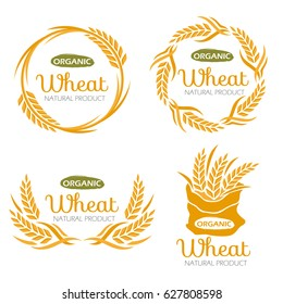 Paddy Wheat rice organic grain products food banner sign vector design