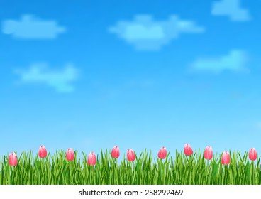 Page 9 of 9 (background). Mock-up for info graphic, presentation, books, documents, etc with blue sky, transparent clouds, green grass and pink flowers tulips