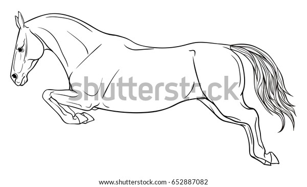 Page Coloring Equestrian Sport Horse Jumps Stock Vector Royalty