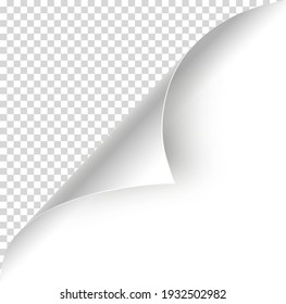 Page curl blank. Realistic paper corner. Two place for image or text. Sheet of paper with page curl. Vector element for advertising and promotional. Corner sticker.