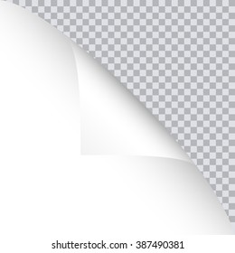 Page curl with shadow on blank sheet of paper.  Vector illustration for your design and business