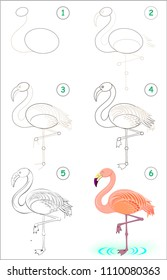 Page shows how to learn step by step to draw a cute flamingo. Developing children skills for drawing and coloring. Vector image.