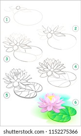 Page shows how to learn step by step to draw a water lily flower. Developing children skills for drawing and coloring. Vector image.