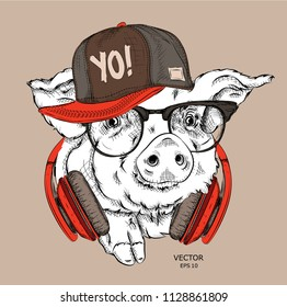 A painted funny pig with glasses and a hip hop cap. Vector illustration. It can be used as a print on clothes or as part of the design of other products