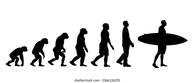 Painted theory of evolution of man. Vector silhouette of homo sapiens. Symbol from monkey to surfer.