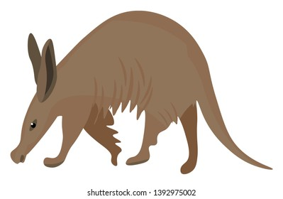 Painting of the brown aardvark with long ears  a tubular snout  and a long extensible tongue grazing on the land  vector  color drawing or illustration