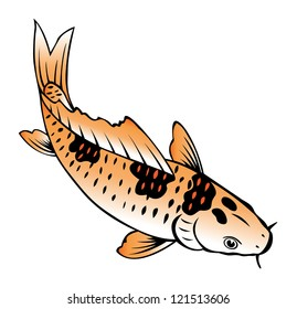 painting of carp fish on white background