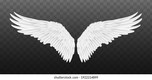 Pair of beautiful white angel wings isolated. Vector concept white cute feathered wing animal on a transparent background
