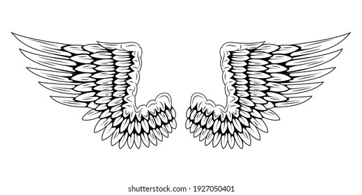 Pair of bird wings isolated on white background. Angel wings. Wings for tattoo. Design element.
