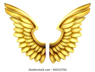 A pair of gold or golden shiny metal wings