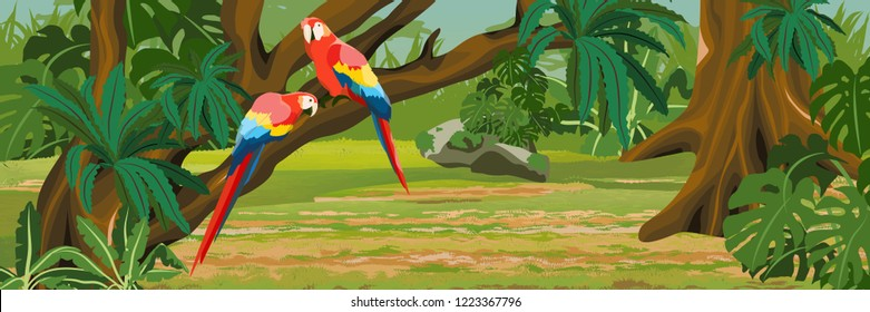 A pair of macaw parrot lovers sitting on a liana. Jungle A tropical forest. Rainforests of Amazonia. Tree, epiphytic ferns, creepers, banana trees and monsteras. Realistic Vector Landscape