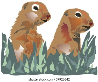 Pair of marmots gazing out from behind foliage.