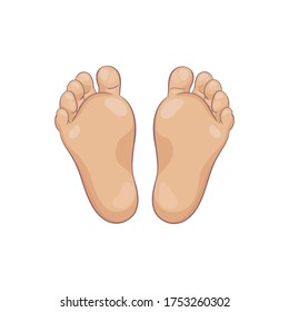 Pair of newborn baby foot soles, bottom view. Tiny plump feet with cute heel and toes. Realistic caucasian skin colours. Vector illustration, hand drawn cartoon style, isolated on white