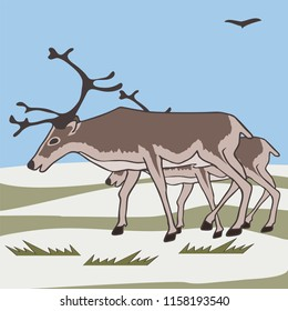 pair reindeers at tundra background, vector cartoon illustration of caribou