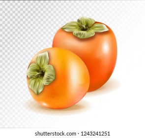 Pair of ripe persimmon fruits isolated on transparent background. Two whole persimmons. Quality realistic vector, 3d illustration