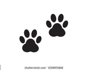 A pair of traces from the paws (imprint) of a wild animal.