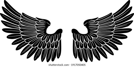 A pair of wings possibly belonging to an angel or eagle or other bird