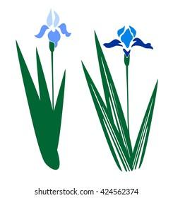 blooming blue iris images stock photos vectors shutterstock rh shutterstock com