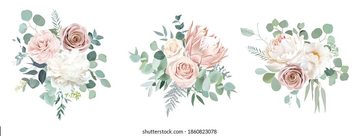 Pale pink camellia, dusty rose, ivory white peony, blush protea, nude pink ranunculus, eucalyptus vector design bouquets. Wedding neutral sage and beige flowers. All elements are isolated and editable